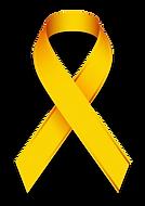 Laço-Maio-Amarelo.png
