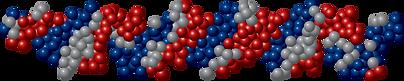 Molecula-Colageno-tipo-2.png
