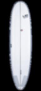 magasin,sports,glisse,SURFIT,surfshop,boardshop,annecy,surf,earth,bic,bois,longboard,malibu,gun