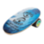 magasin,sports,glisse,SURFIT,surfshop,boardshop,annecy,indoboard