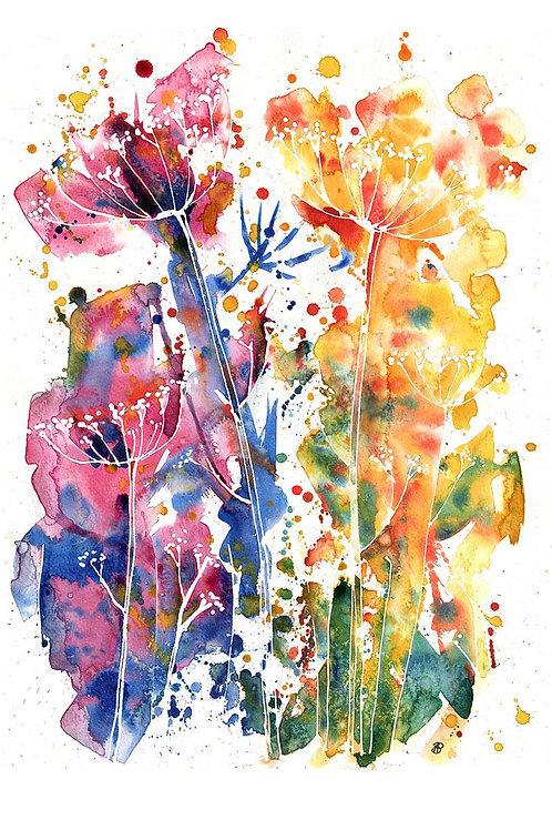 """Rainbow cow parsley"" Limited edition print"