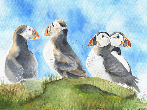 """""""Puffins"""" Limited edition print"""