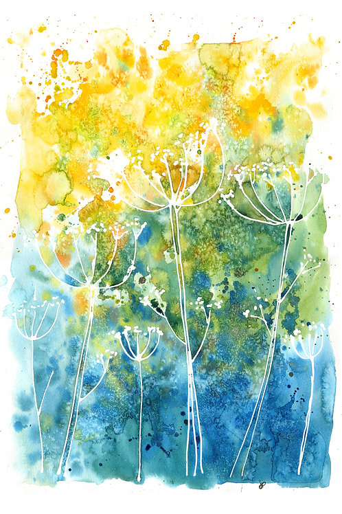 """""""Blue & yellow cow parsley"""" Open edition print"""