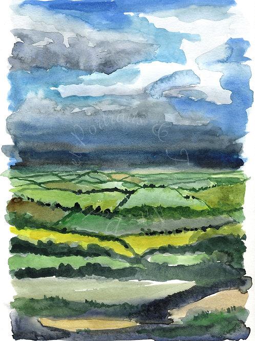 """""""Devon fields"""" Limited edition print"""