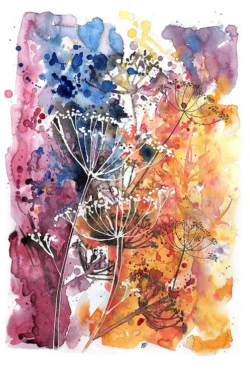 "Original artwork ""Autumn Cow Parsley"""