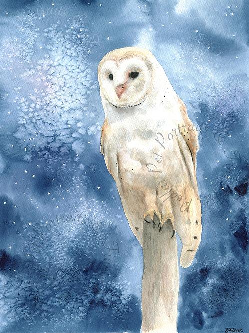 """Barn Owl"" limited edition print"