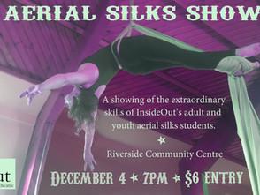 Aerial Silks Show