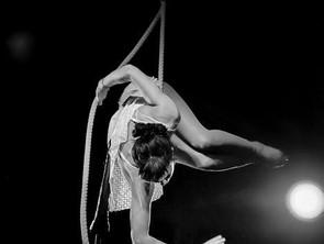 Dance Trapeze Workshop