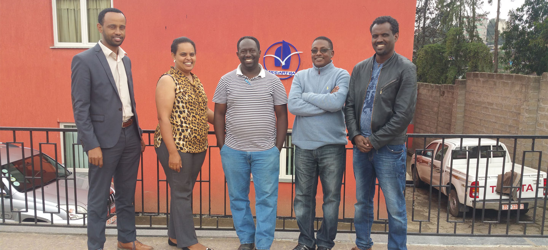 SDE Head Office Staffs