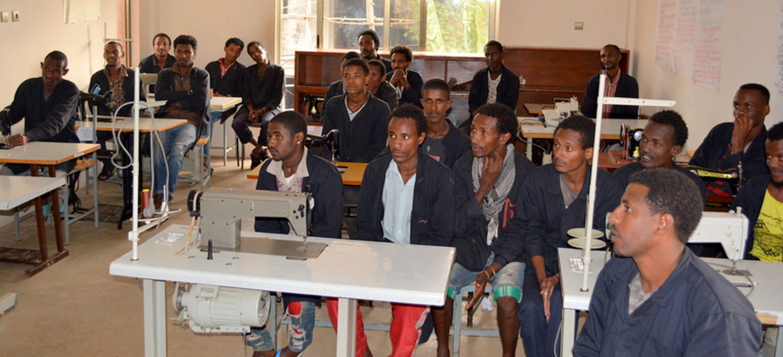 SDE project participants