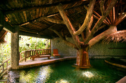 naturalpool1-amenities
