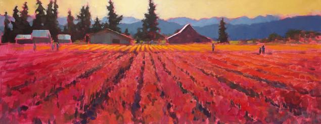 Jed Dorsey - Tulip Festival - 16x40 - SOLD