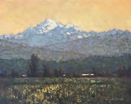 Jed Dorsey - Skagit Valley Summer - 20x16 - SOLD
