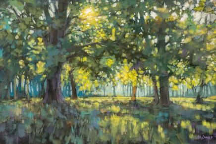 Jed Dorsey - Through Silent Trees (Camano Island, WA) - 24x36 - SOLD