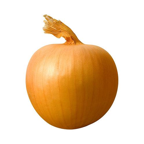 large yellow onion