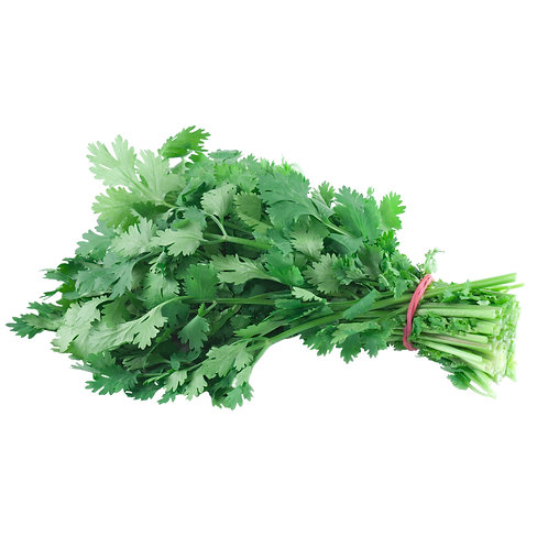 one bunch cilantro