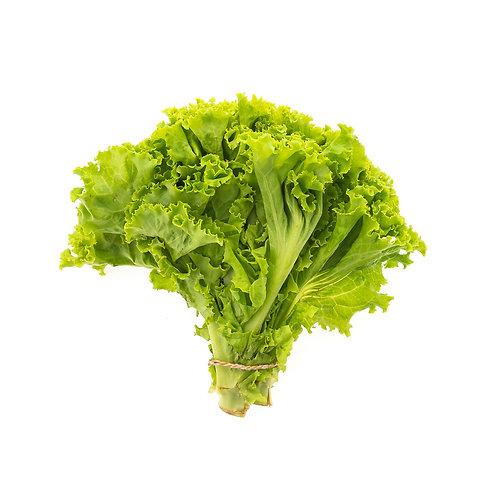 local green leaf lettuce