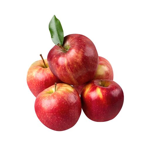 courtland apple