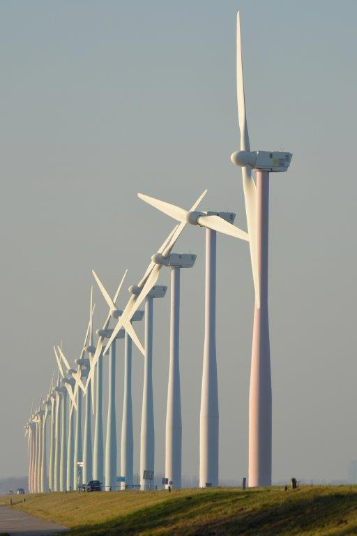 WINDFARM-nature-678329_1920