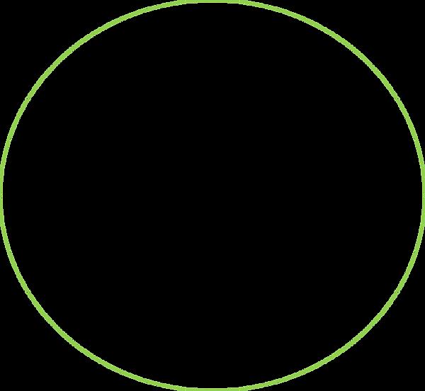 circulo verde.png