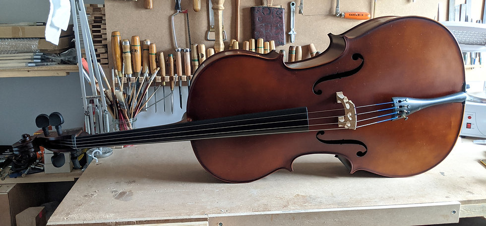 Beginner Cello Outfit