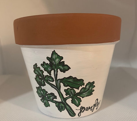 Parsley Flower Pot
