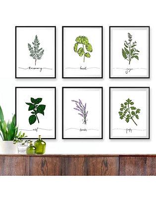 Spice Fine Art Print Series