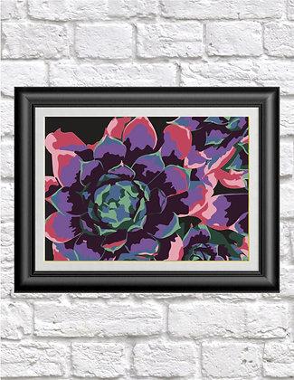 Technicolor Succulents