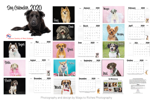 Calendar Collage (1).png