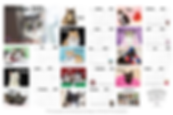 Calendar Collage.png