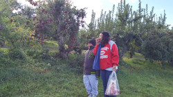 Youth Outing: Apple Picking