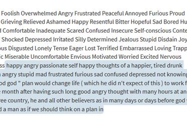 Blog: Algorithmic Emotions