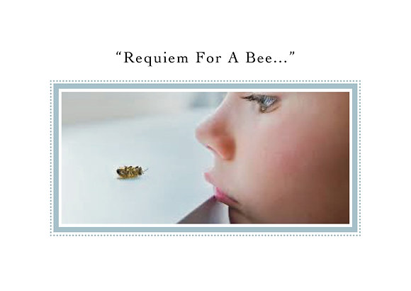 Requiem For A Bee (Boy)