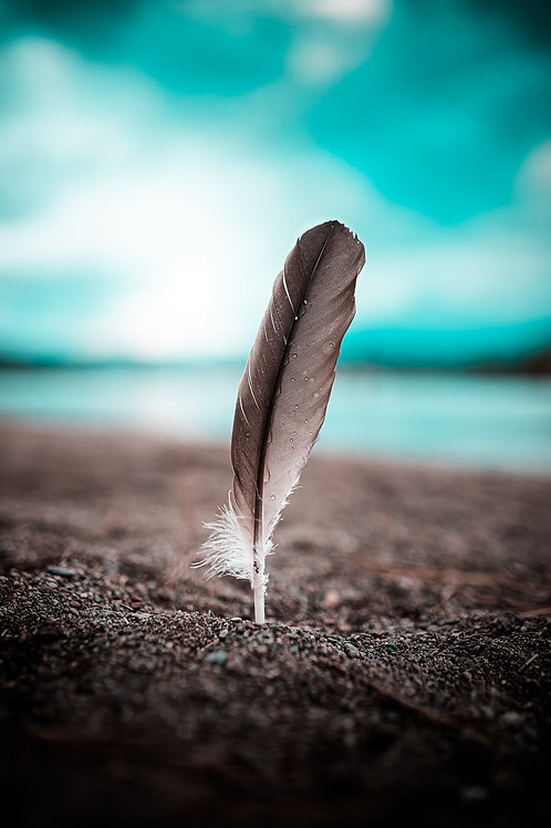 Sandy Feather