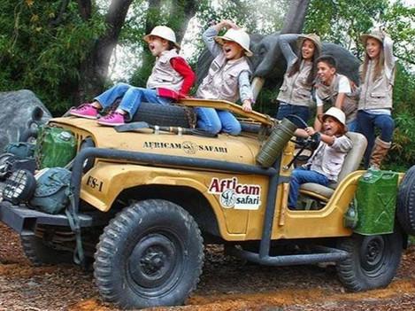 Africam-Safari (1 día)
