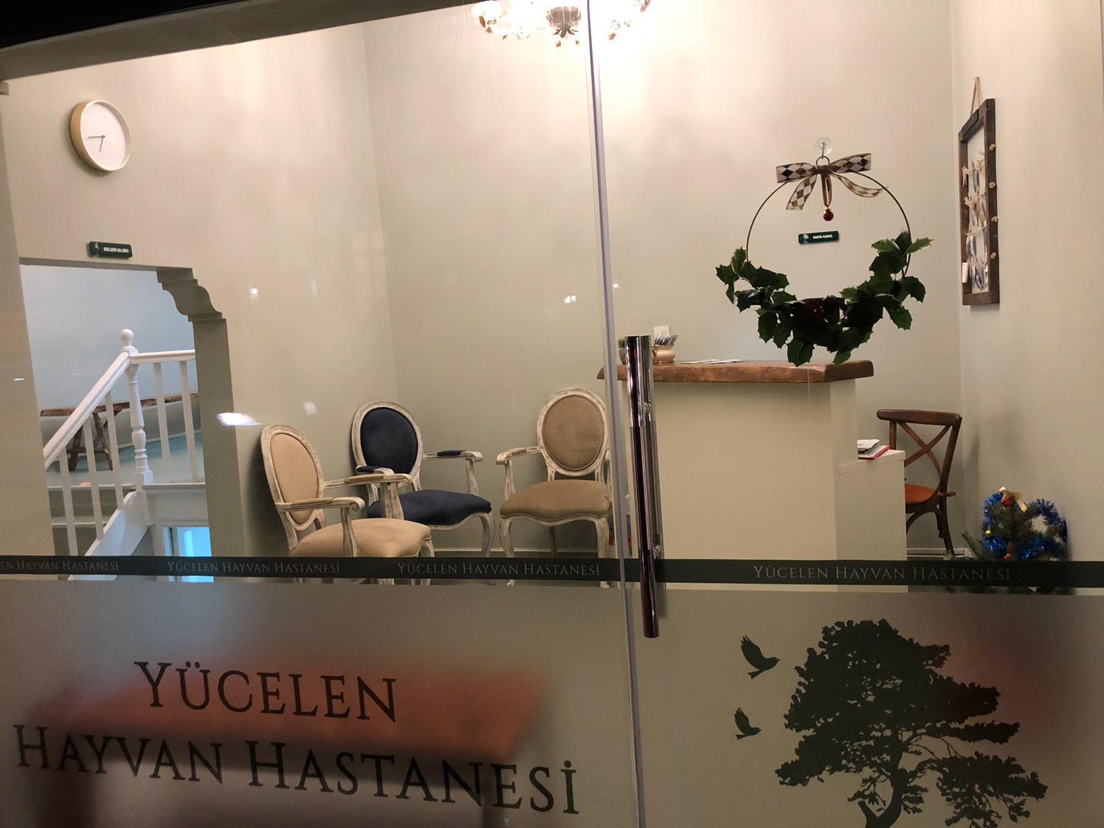 www.yucelenhayvanhastanesi.com