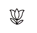 flower-small_edited.png