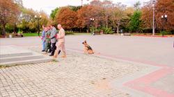 Афганский парк в Перово