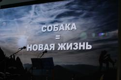 "презентация Проекта ""СОБАКИ-ТЕРАПЕВТЫ ВЕ"