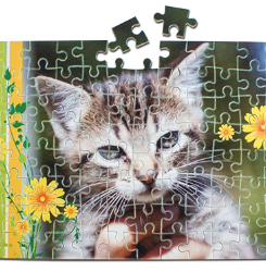 Puzzle_A4_FF_edited.png