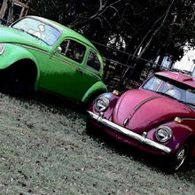 1964 and 1974 Beetles