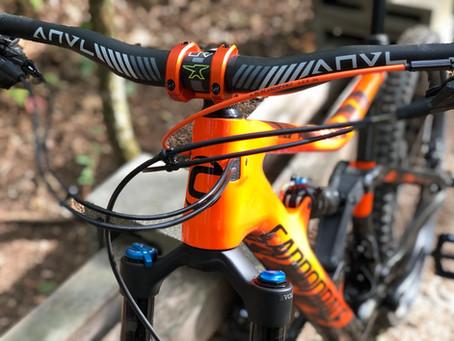 Share your LBS/non Big Box bike!