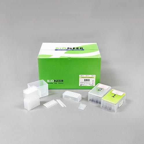 ExiPrep™ 48 Viral DNA/RNA Kit using ExiPrep™ 48Dx