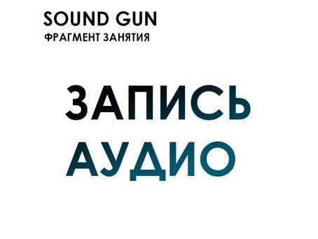 "Sound Gun. Фрагмент занятия ""Запись Аудио"""
