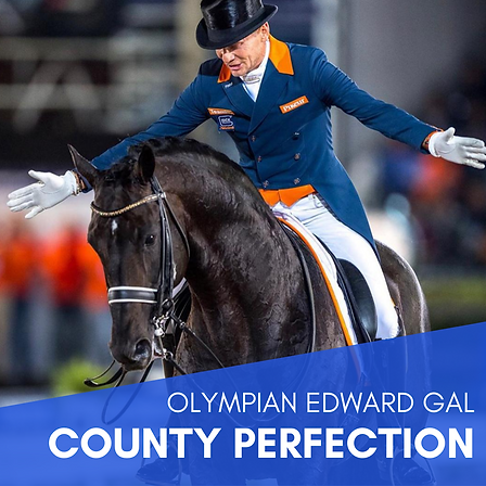 Olympian Edward Gal - County Perfection