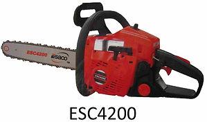 ESC4200.jpg