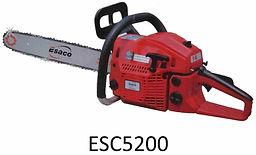 ESC5200.jpg