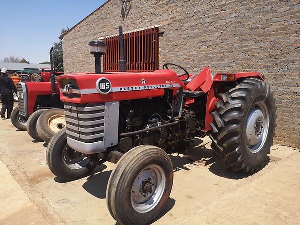Massey Ferguson 165.jpg
