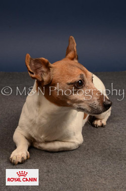 M&N Photography -DSC_4595-2
