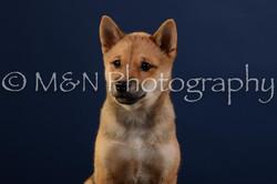 M&N Photography -DSC_3789